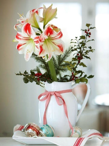 Red and white Amaryllis with holly and pine sprigs in a rustic white jug, sat on a tray withfestive Christmas baubles