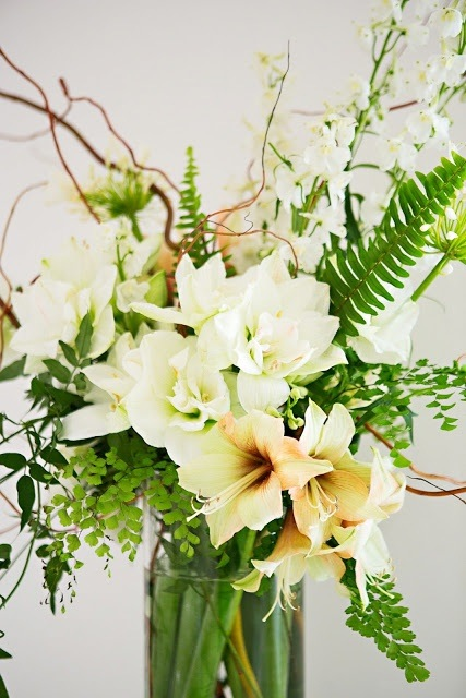 Modern white Amaryllis and fern arrangement